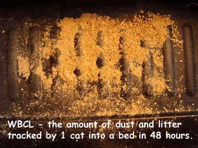 The Litter Box From Your Cat S Point Of View By Lisa A