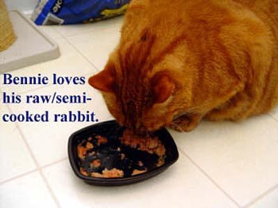 bennie-eating-raw-copy