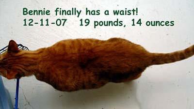 bennie-waist-12-11-07-2-copy