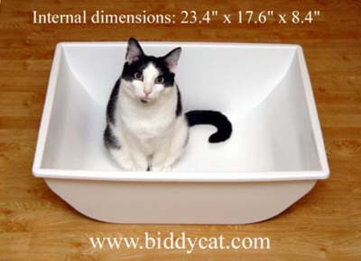 The Litter Box From Your Cat S Point Of View