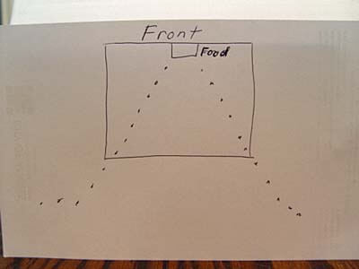 food-trail-schematic